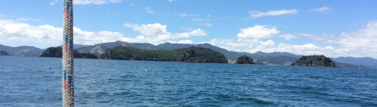 Coromandel – islandparadise